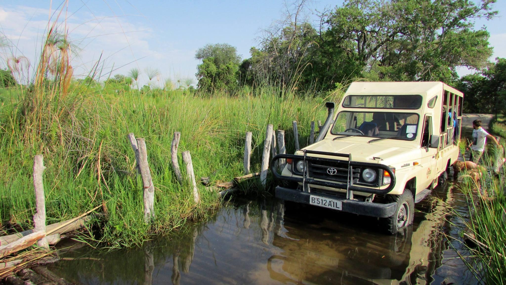 10 Days Authentic Botswana Mobile Safari