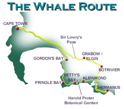 The Whale Route Map