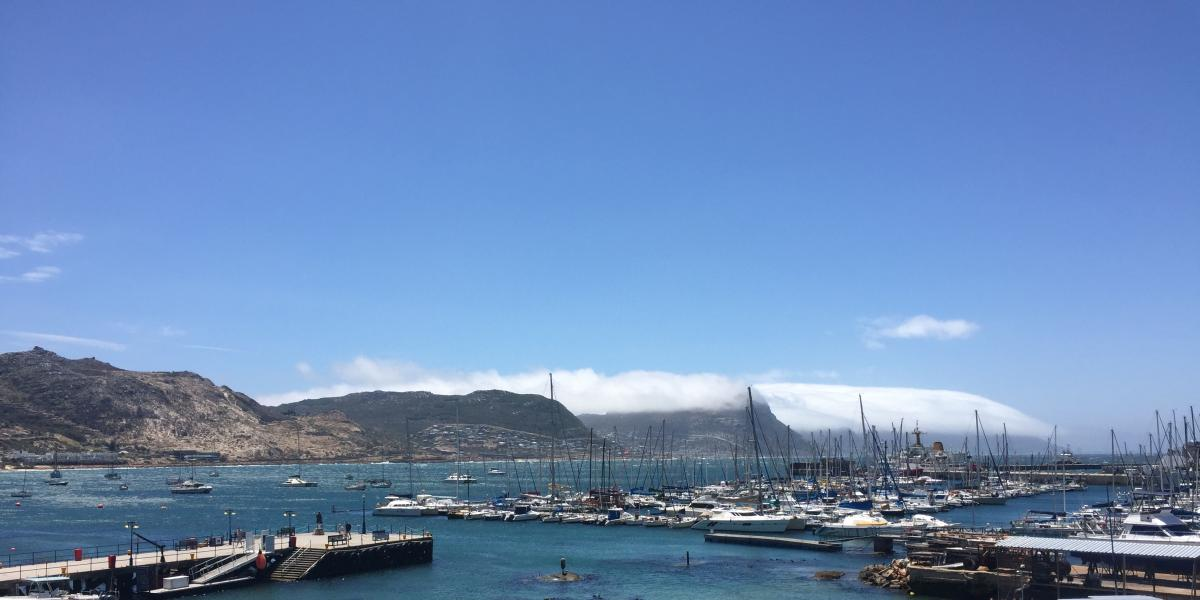 Best of Cape Town Full Day Tours