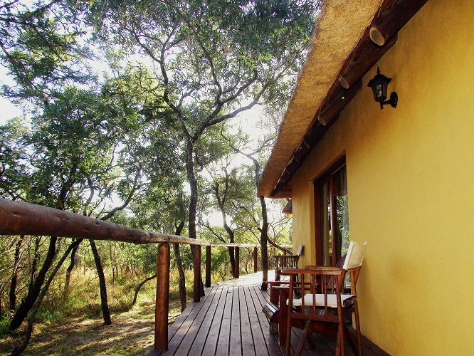 Timbavati Thornhill Safari Lodge