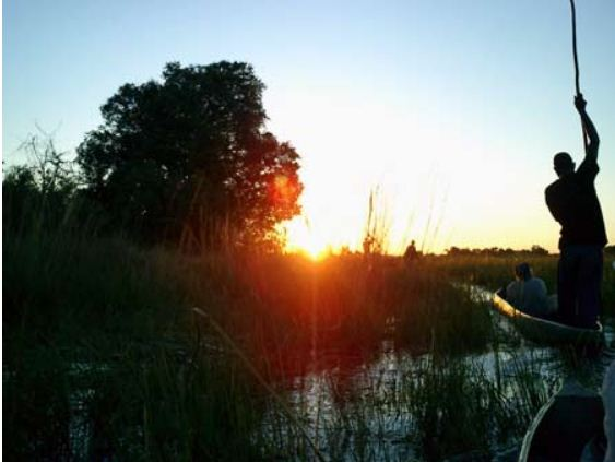 6 Day Okavango Mobile Safari