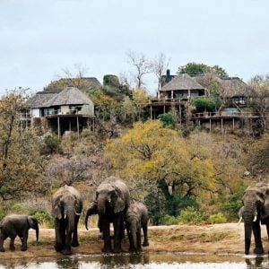 Leopard Hills Safari Lodge