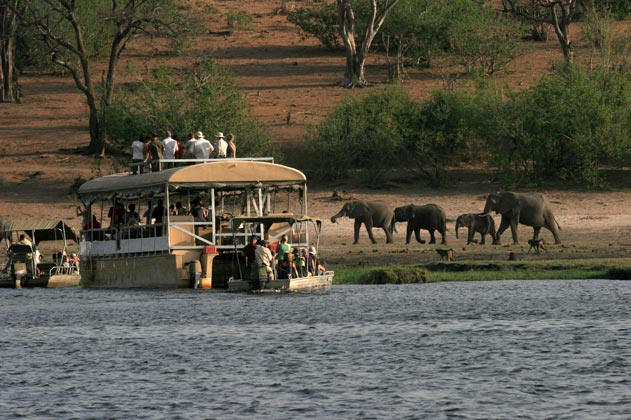 Chobe and Okavango Delta Safari Packages