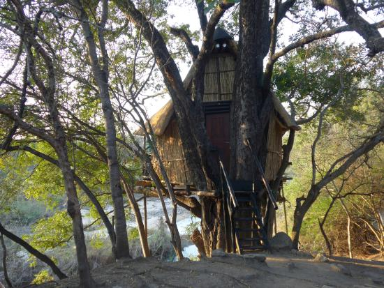 3 Day Kruger Treehouse Safari