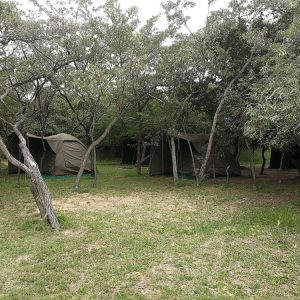 4 Day Kruger Wild Camping Safari
