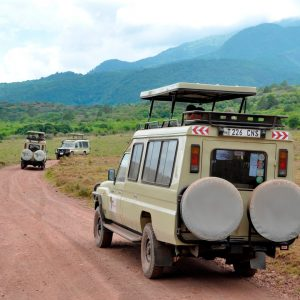 Customized Safaris in Tanzania