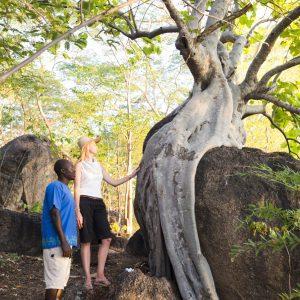 Castaway Island Experiences in Malawi
