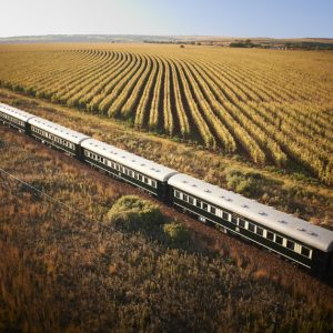 4 Day Pretoria to Victoria Falls by Luxury Train