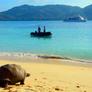 7 Night Seychelles Island Hopping Luxury Cruise