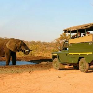 4 Days Kruger Safari & Elephant Sanctuary Tour