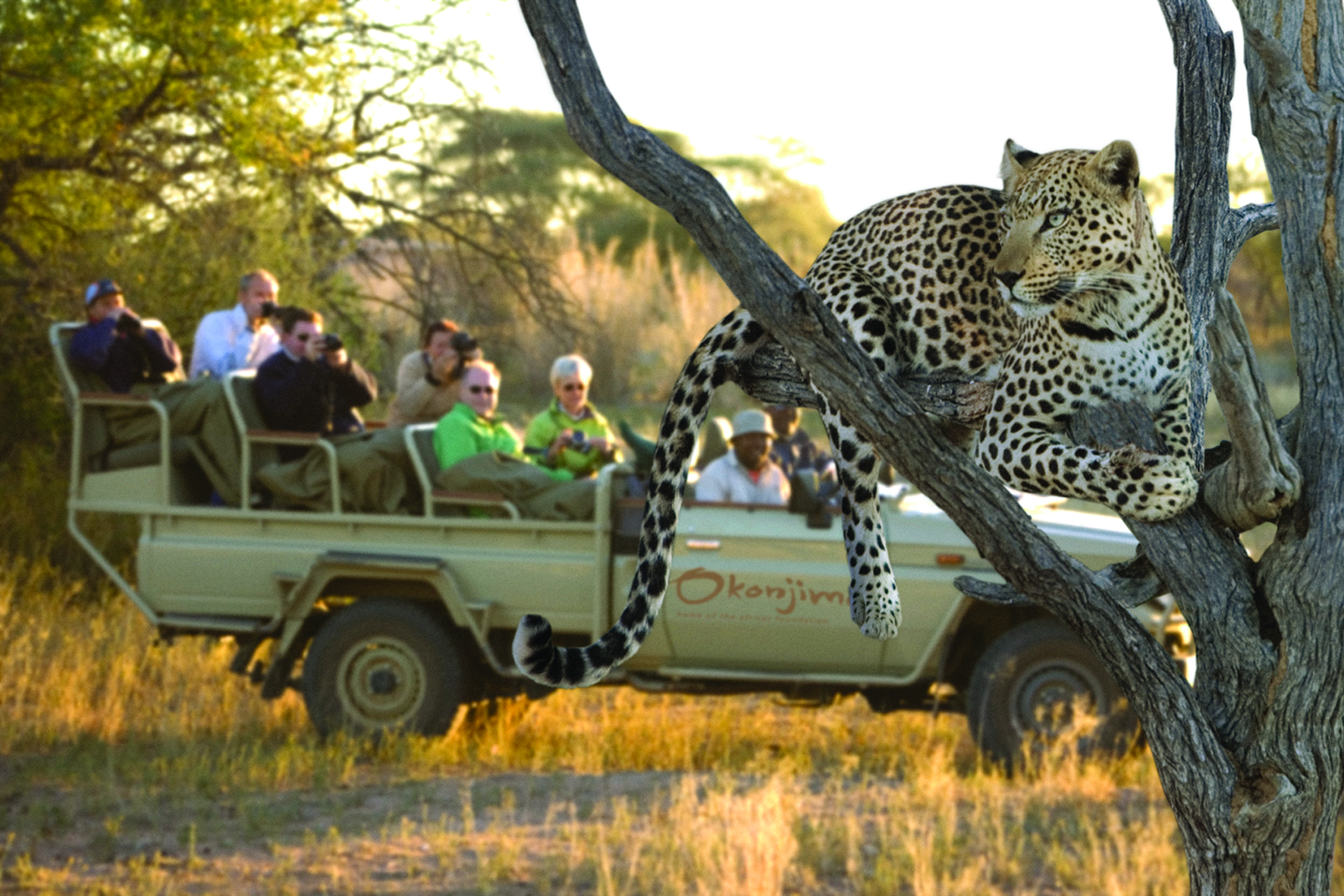 13 Day Untamed Namibia Group Tour