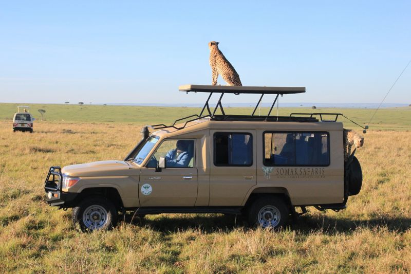 10 Days Tanzania & Kenya Luxury Safaris