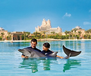 Dolphin Encounter at Atlantis