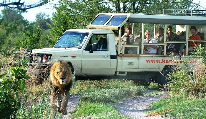 9 Day Kalahari Safari