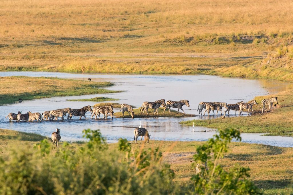 Botswana Highlights Tour