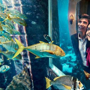6 Day Atlantis the Palm Dubai Holiday