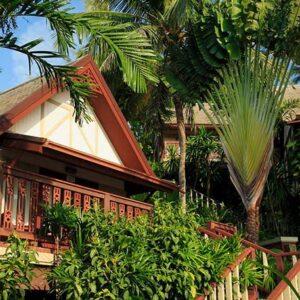8 Day Koh Samui and Koh Phangan Holiday