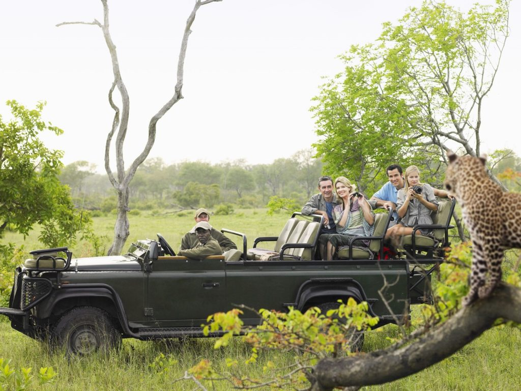 Open vehicle game drive