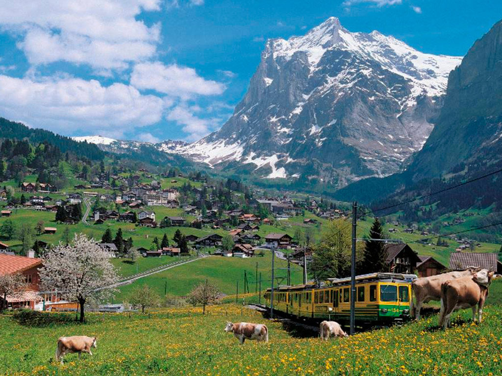 Grindewald Rail tour to Jungfraujoch