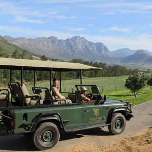 Wildlife Safaris in Franschhoek