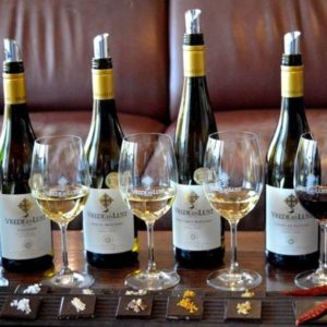 Chocolate & Wine Paring in Franschhoek