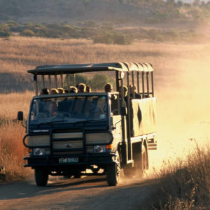 Safaris from Sun City